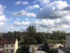 Ausblick auf die Elbauen und Alte Elbe